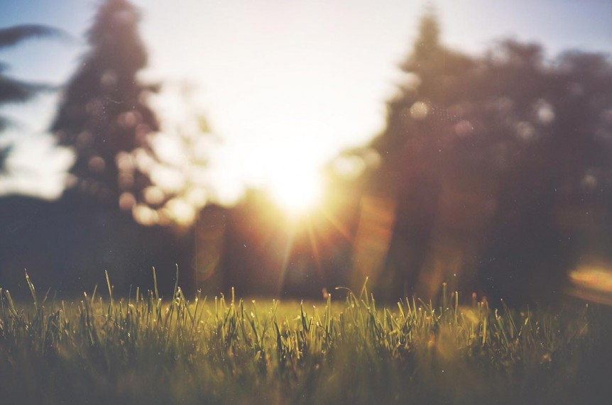 Sunlight over a field. Start video therapy in Oregon with a caring, Christian counselor in Portland, OR. Contact us to start Online therapy in Oregon today.